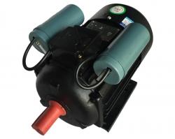 温岭食品机械电机