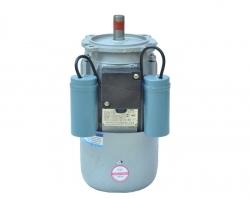磨浆机电机