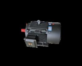 YE3超高效电机